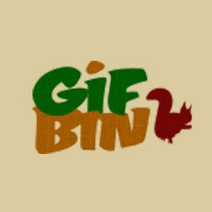 Gifbin